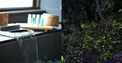 宜蘭小旅行怎麼玩?享受高級溫泉、登山步道,還有這個超夢幻「螢火蟲秘境」!