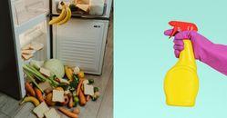 冰箱除臭可以用檸檬!清潔保養掌握5個秘訣 ,清潔劑請選用這些天然材料,「門磁條」用牙膏很有效!