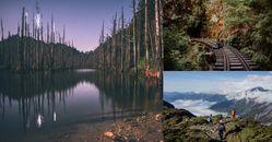 登山路線推薦五大「森林探險路線」!除了嘉明湖,登山客搶登的阿里山「眠月線」也正夯!