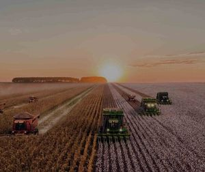 Рынок земли: все аспекты реформы