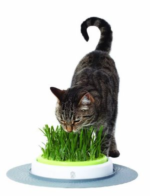 Cheap catit design senses gras gartenset