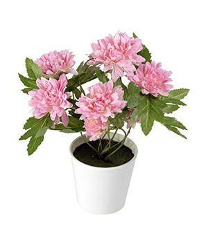 deals for - closer 2 nature c034d künstliche chrysantheme 26 cm rosa