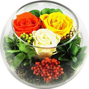 Angebote für -rosen te amo blumen gesteck aus drei konservierte blumen enthält drei echte premium haltbare rosen in der farben orange gelb und champagne unser exklusives blumen arrangement wird handgemacht und mit liebe gefertigt