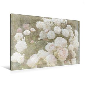 deals for - premium textil leinwand 120 cm x 80 cm quer romantische rosen shabby chic style wandbild bild auf keilrahmen fertigbild auf echter leinwand leinwanddruck calvendo natur