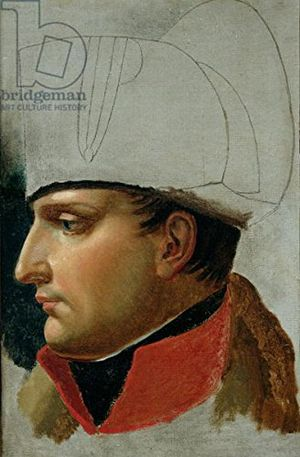 deals for - alu dibond bild 80 x 120 cm unfinished portrait of napoleon i 1769 1821 formerly attributed to jacques louis david 1748 1825 1808 oil on canvas bild auf alu dibond
