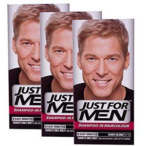 ofertas para - just for men hair colour sandy blonde3