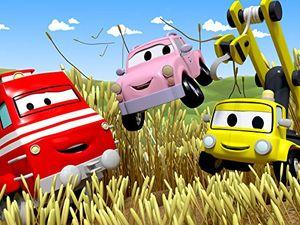 Review for die kleinen autos spielen verstecken peter das postauto verteilt geburtstags party einladungen