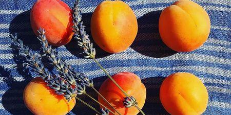 6+1 λόγοι που τα βερίκοκα είναι το απόλυτο superfood του καλοκαιριού