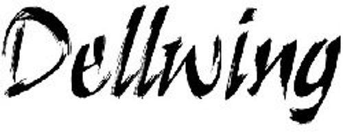 photo Wallpaper of DELLWING-Dellwing Kapodaster I Premium Capo Für Die Gitarre I Western-Schwarz