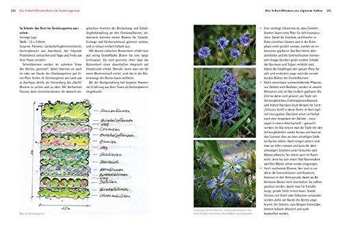 photo Wallpaper of Löwenzahn-Bio Schnittblumen Aus Dem Eigenen Garten: Die Besten Anbautipps Und Die Schönsten-
