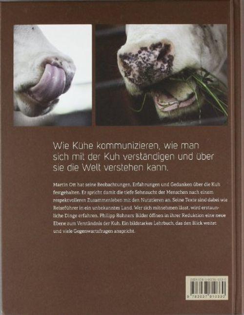 photo Wallpaper of Fona; Faro-Kühe Verstehen: Eine Neue Partnerschaft Beginnt-