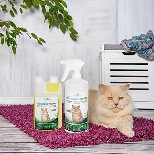 photo Wallpaper of Ecosharkz-Neutralizadores De Olor Spray Para Gatos  Natural Removedor De-