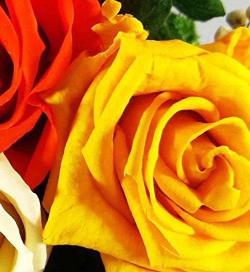 photo Wallpaper of Rosen-te-amo-Rosen Te Amo Blumen Gesteck Aus Drei Konservierte Blumen Enthält Drei-Orange