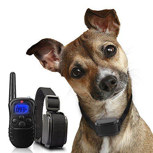photo Wallpaper of Wolfwill-WOLFWILL Hunde Erziehungshalsband Mit Ton,Vibration Und Pfeife,Funktrainer Training Halsband Für Hunde,Wiederaufladbar Und-Halsband 2