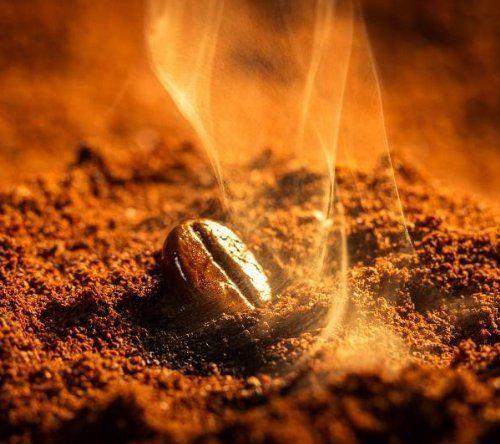 photo Wallpaper of Jamaica Blue Mountain-Coffee Roasters Of Jamaica 100% Blue Mountain Gemahlen, 1er Pack-
