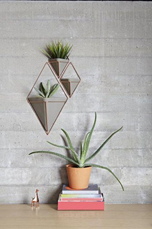 photo Wallpaper of Umbra-Umbra Trigg Wandvase & Geometrische Deko – Übertopf Für Zimmerpflanzen, Sukkulenten,-Grau / Kupfer