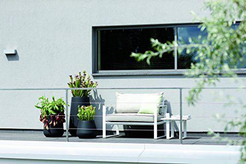 photo Wallpaper of elho-Elho Pure Cone High Pflanzgefäß 45cm   Ocker-Ochre (Flowerpot)