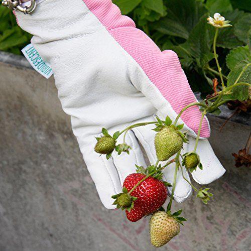 photo Wallpaper of Viridescent-Lederne Gartenhandschuhe Für Damen (kleine Größe / Mittelgroß)   Von-Pink