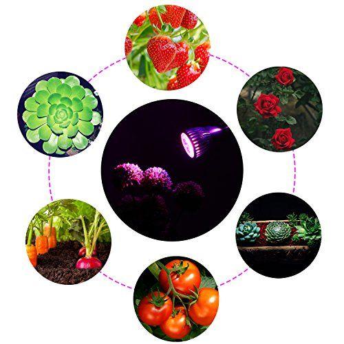 photo Wallpaper of Amzdeal-Amzdeal Pflanzenlampe Wachstumslampe Blumenlampe, Pflanzenbeleuchtung Mit 360 Grad Drehung (10W Doppelter Kopf)-