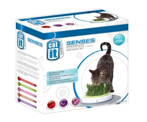 photo Wallpaper of Catit-Catit Design Senses   Gras GartenSet-