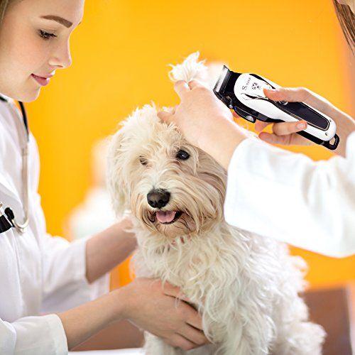 photo Wallpaper of SURKER-SURKER Cortapelos Para Mascotas Cortapelos Para Perros Gatos Profesional Cortapelos Para Perros Cortapelos Recargable-