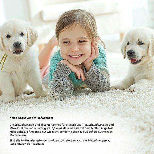 photo Wallpaper of Der Motten-Shop-Schlupfwespen Gegen Lebensmittelmotten, 3000 X 4 Stück-