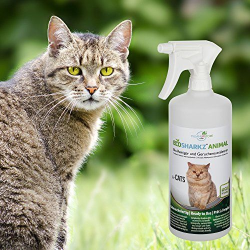 photo Wallpaper of Ecosharkz-Neutralizadores De Olor Spray Para Gatos  Natural Removedor De La Orina-
