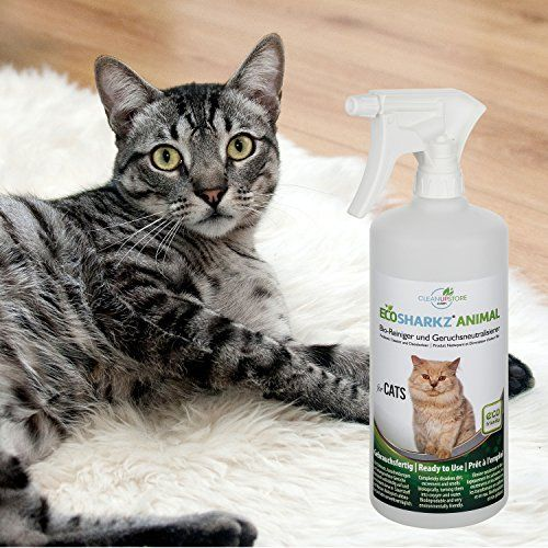 photo Wallpaper of Ecosharkz-Neutralizadores De Olor Spray Para Gatos  Natural Removedor De La-