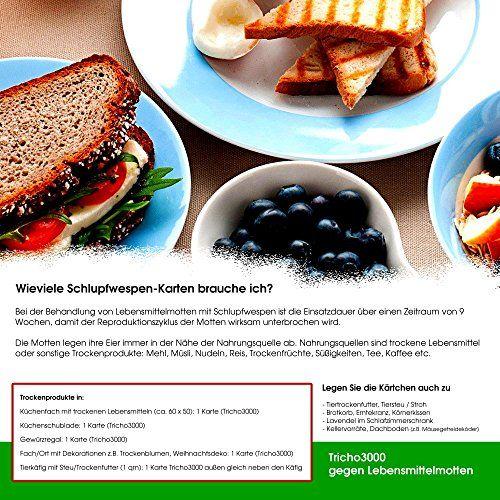 photo Wallpaper of Der Motten-Shop-Schlupfwespen Gegen Lebensmittelmotten GROSSPACK 3 X 10 Kärtchen AKTIONSANGEBOT-
