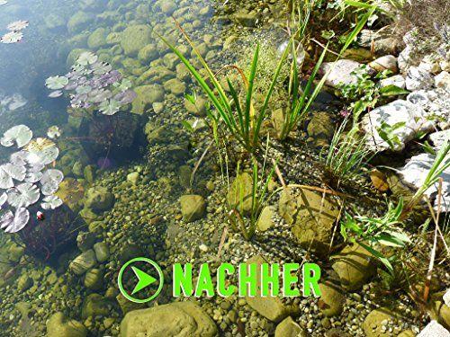 photo Wallpaper of Algenkiller Protect-ALGENKILLER Protect 150 G Für Bis Zu 10,000 Liter,  Wasserpflege Für-