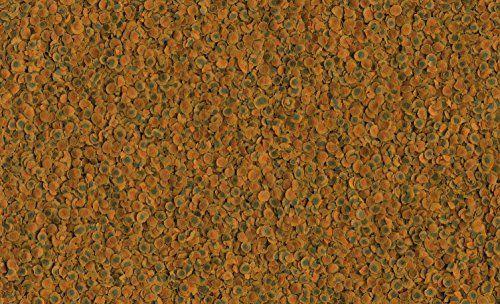 photo Wallpaper of Tetra-Tetra Cichlid Pro Premiumfutter (für Cichliden Mit Natürlichen Farbverstärkern, Minimale-