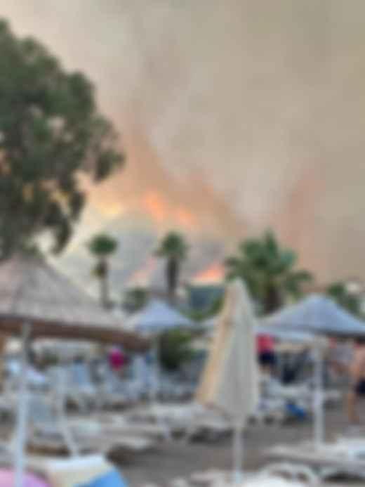 Лісові пожежі в Туреччині. Фото: Facebook / Олеся Павлинська
