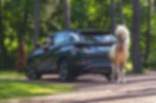 Тест-драйв Hyundai Tucson Hybrid: фото, видео, характеристики, цены, комплектации. Фото: Hyundai