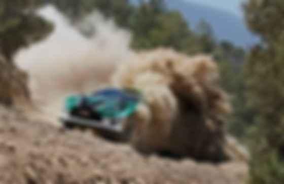 Раллийная Ford Fiesta RS WRC. Фото: A. Lavadinho/Дарница