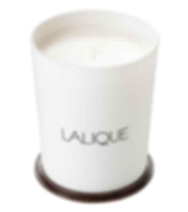 Свеча для дома La Neige Terre Adelie Antarctique. Фото: Lalique