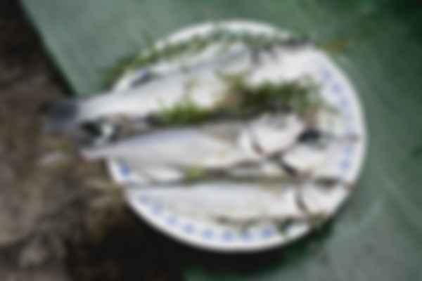 Ужин в Далмации. Фото: Content Pixie / Unsplash