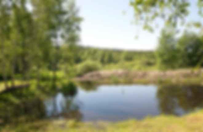 Межреченский ландшафтный парк. Фото: Wikipedia/fotos1983