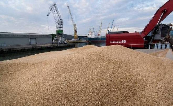 Wheat export forecast has been raised to 20.5 million tons. Photo: SeaNews