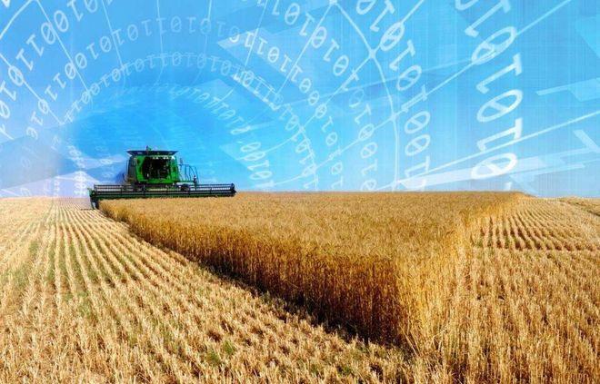 «Прозорро.Продажи» начинает торги по аренде государственной и коммунальной земли сельскохозяйственного назначения. Фото: thetender.com.ua
