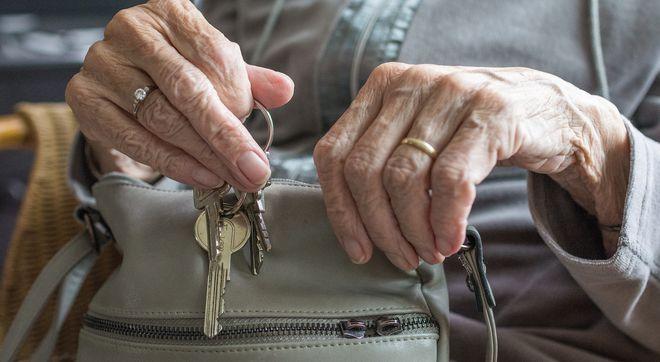Пенсии работающим пенсионерам 2021: как оформить и как рассчитать. Фото: Sabine van Erp/Pixabay