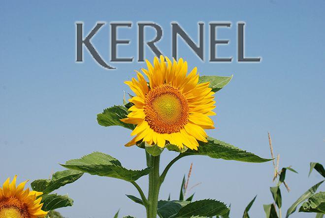 «Кернел» заробив $1 млрд EBITDA вперше в історії. Фото: agroportal.ua