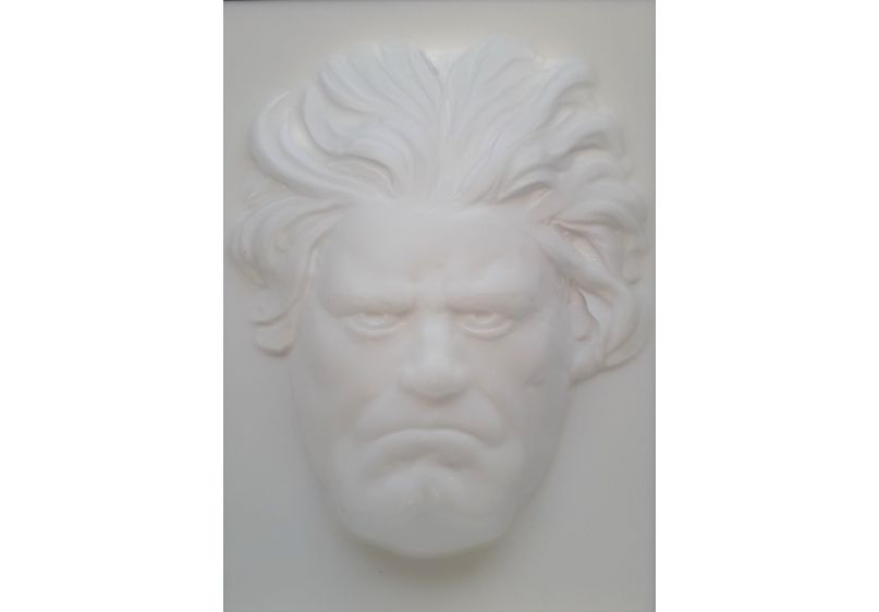 Beethoven Following Face image